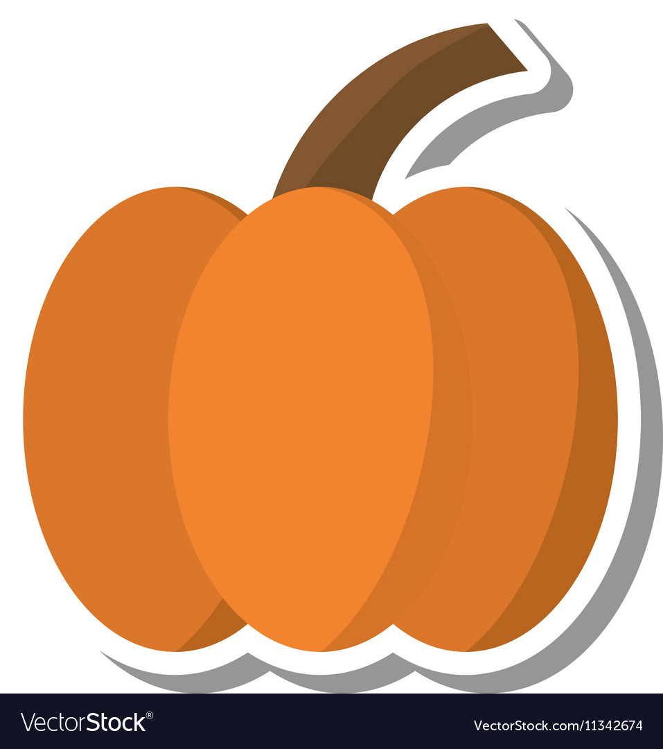 Thanksgiving pumpkin isolated icon