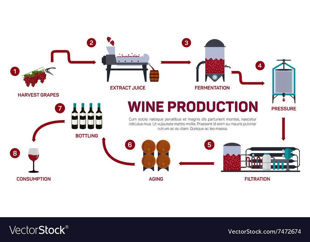 Wine making How wine is