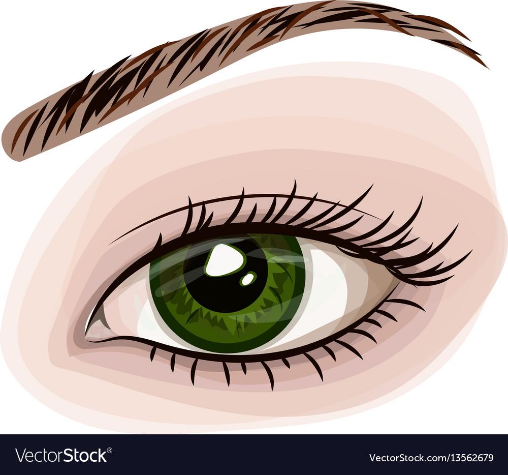 Woman green beautiful eye