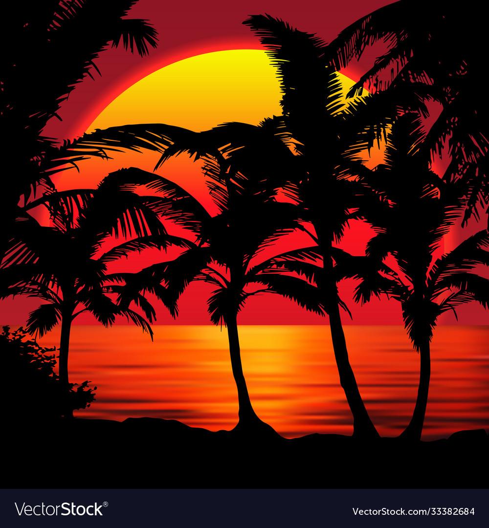 Sunset beach with palms sunset landscape