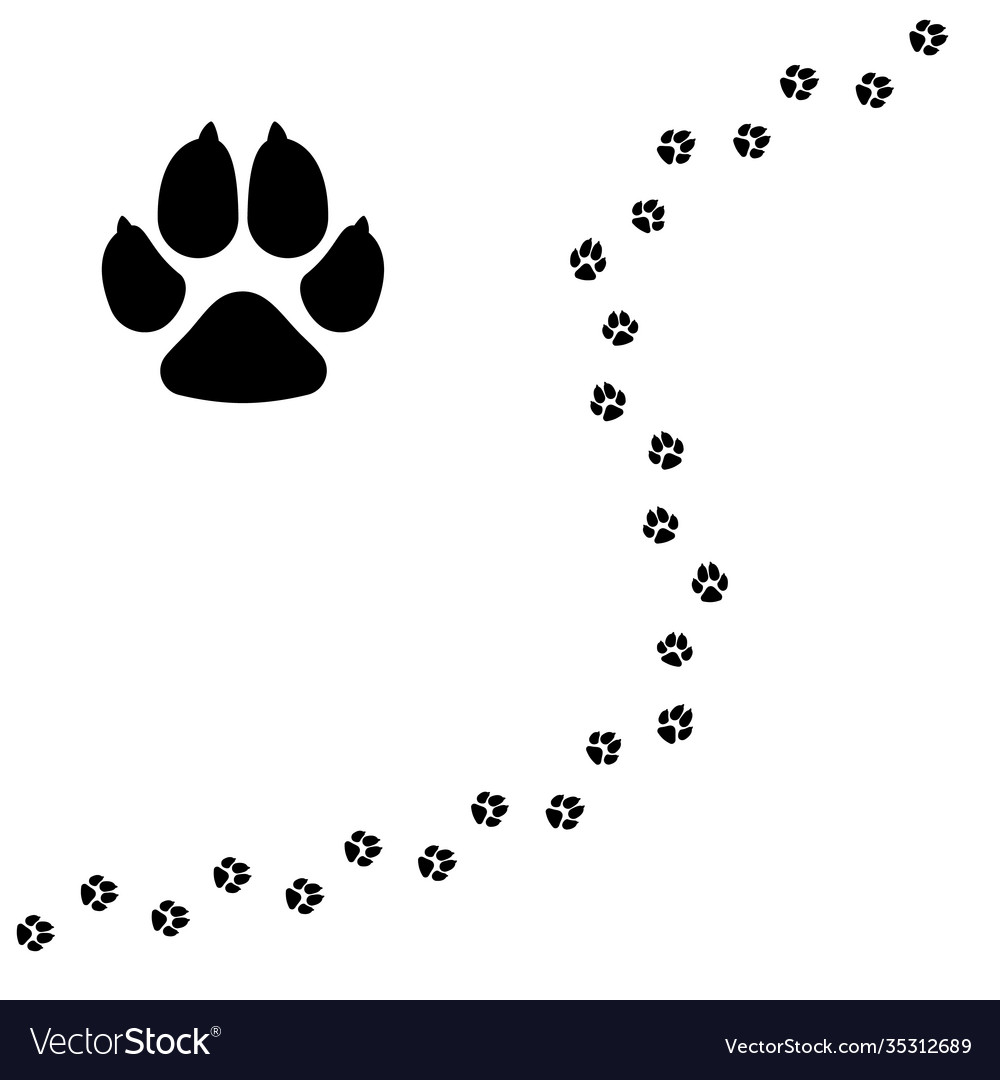 Dogs paw pet footprint flat icon isolated on vector
