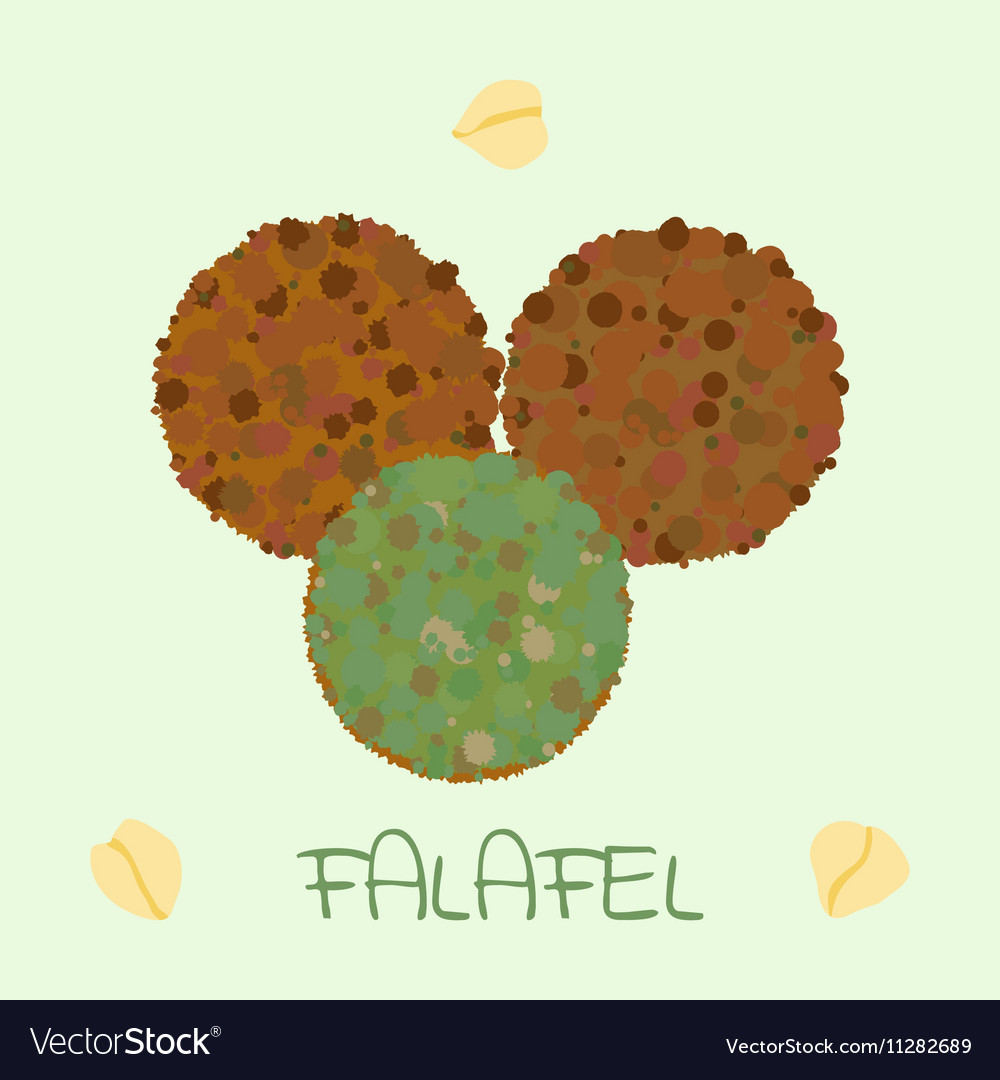 Falafel arabic food