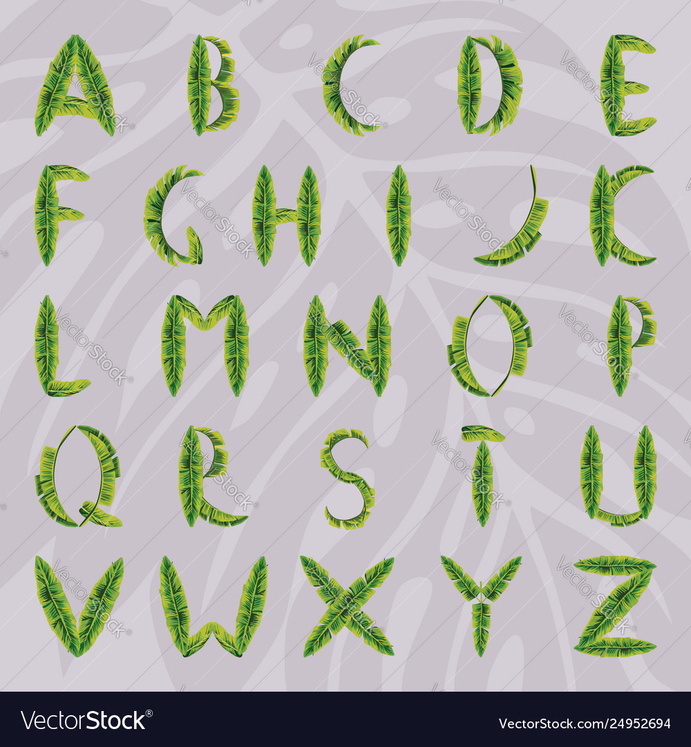 English alphabet made from palm leaves