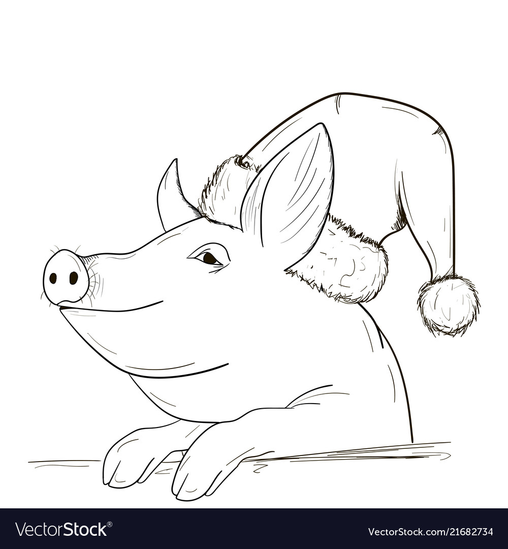 A pig sketch in a new year hat