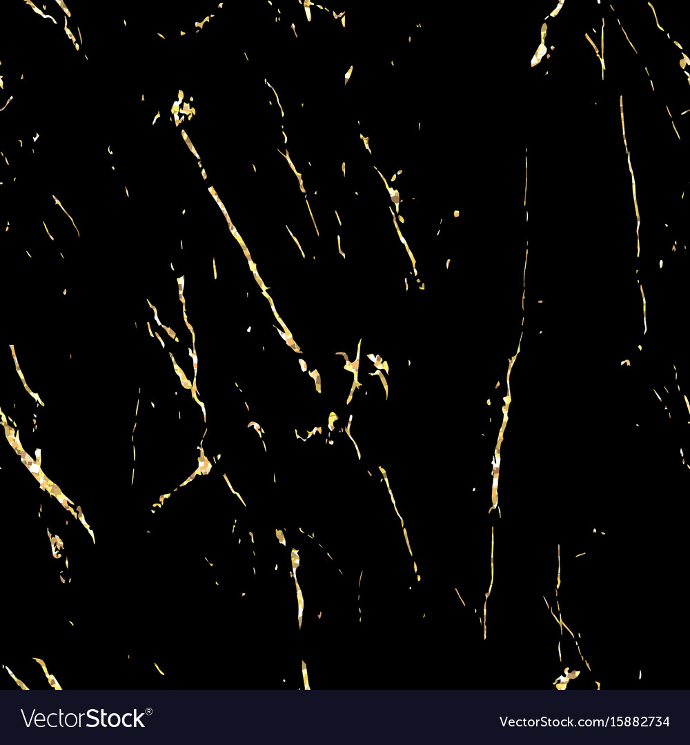 Black Marble With Gold Flecks Royalty Free Vector Image