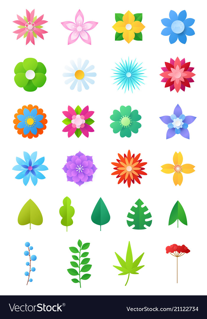 Paper flowers floral decoration or flowered