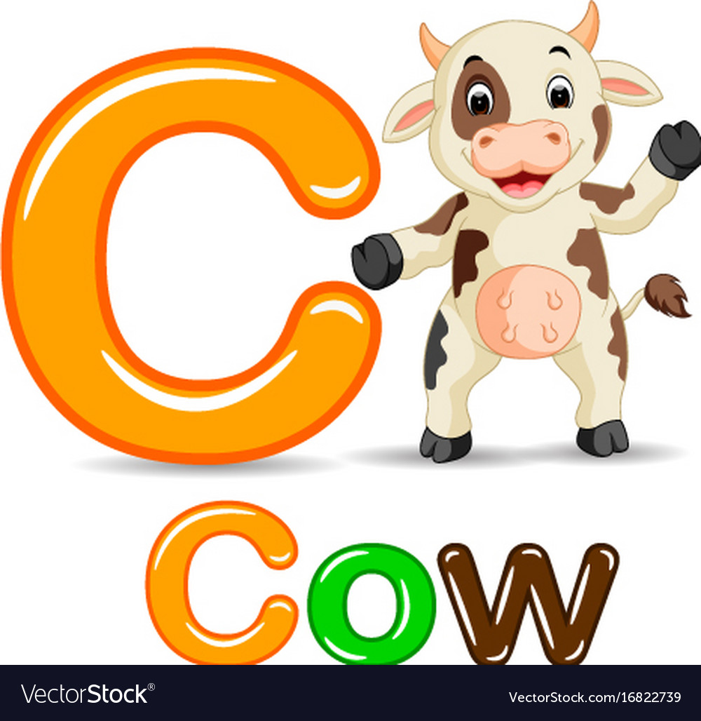 Animals alphabet c is for cow