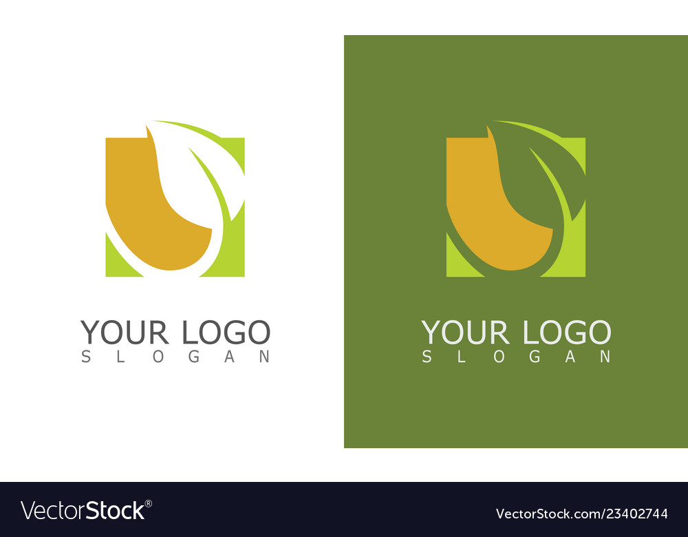 Square green leaf logo