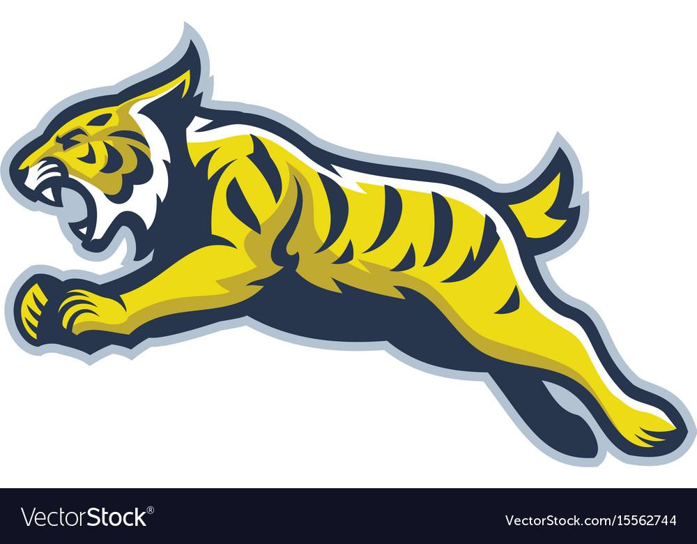 Wildcat mascot vector image