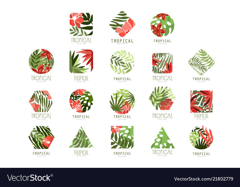 Collection of geometric tropical logo with leaves