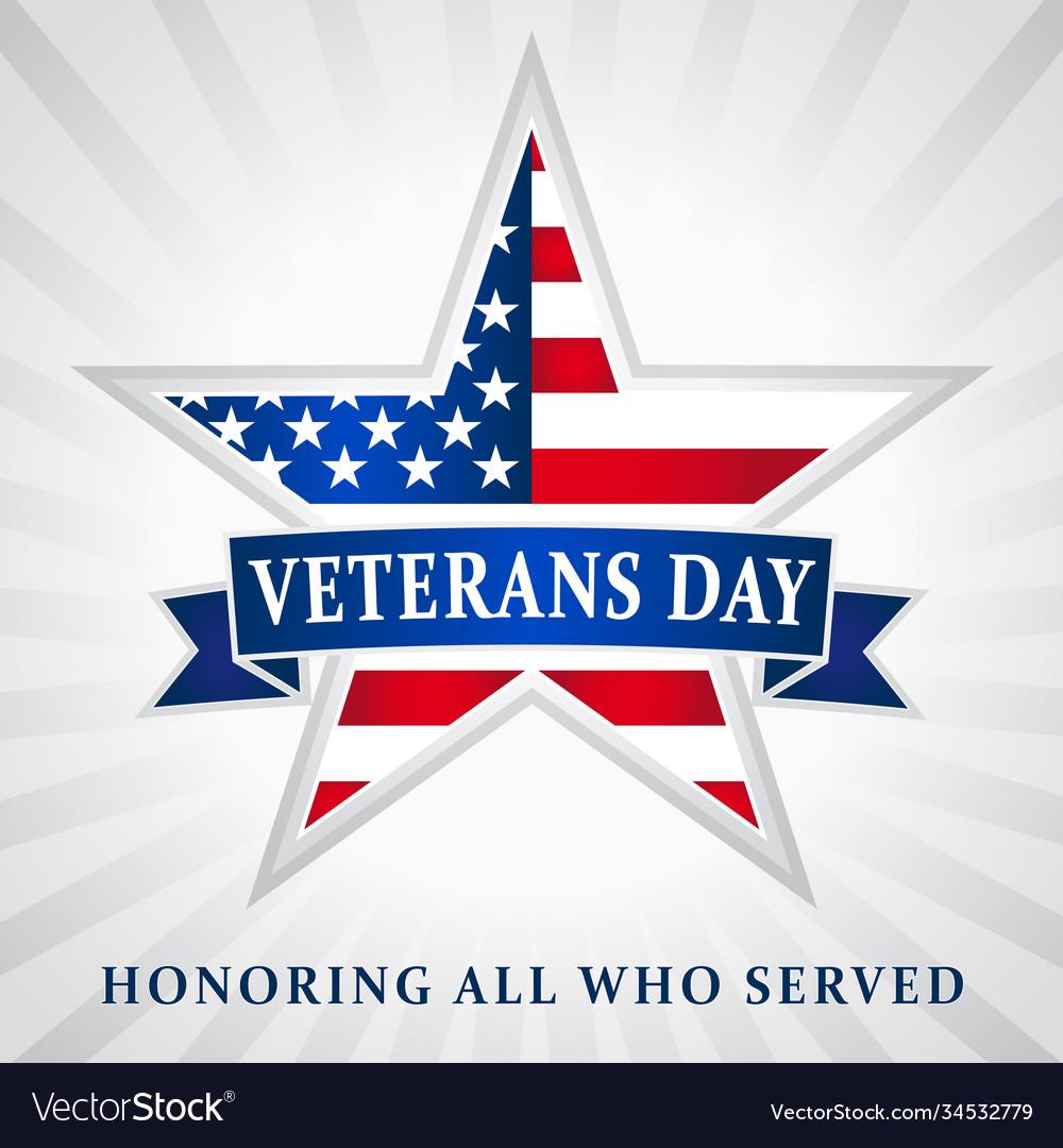 Veterans day usa star ribbon