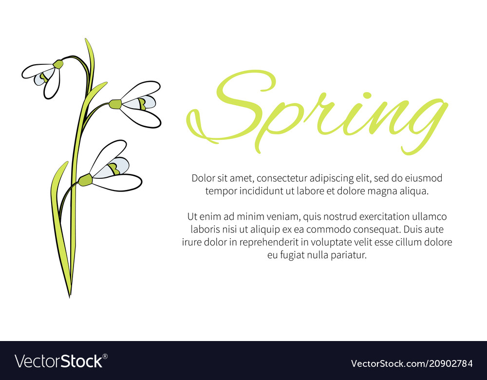 Spring floral banner with text made of snowdrops