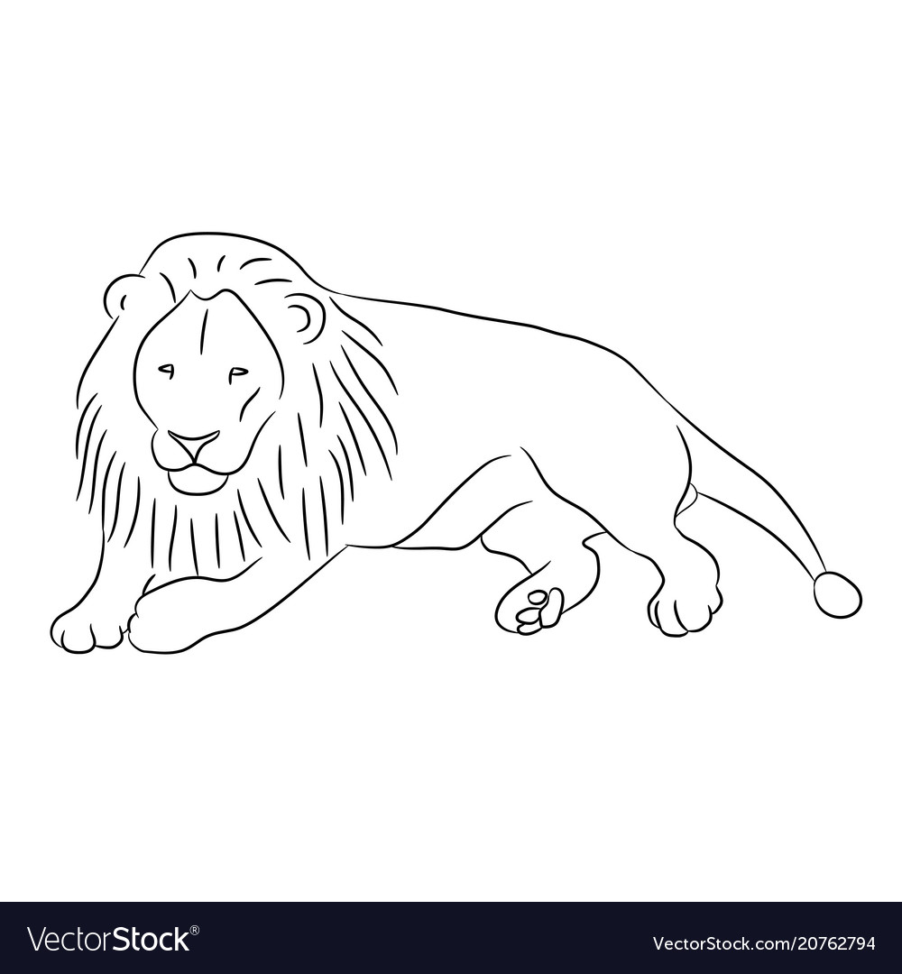 Lying lion from the contour black lines on white