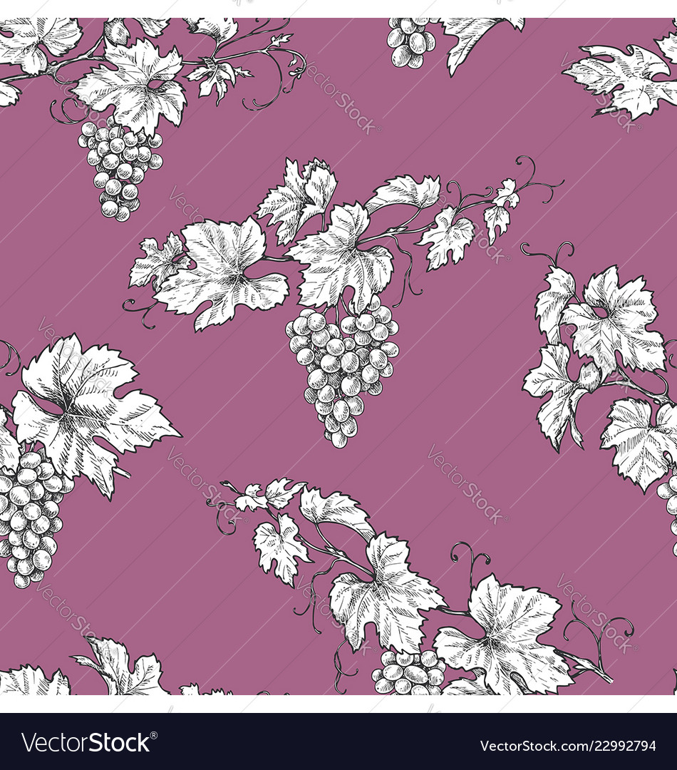 Seamless pattern with grape branches