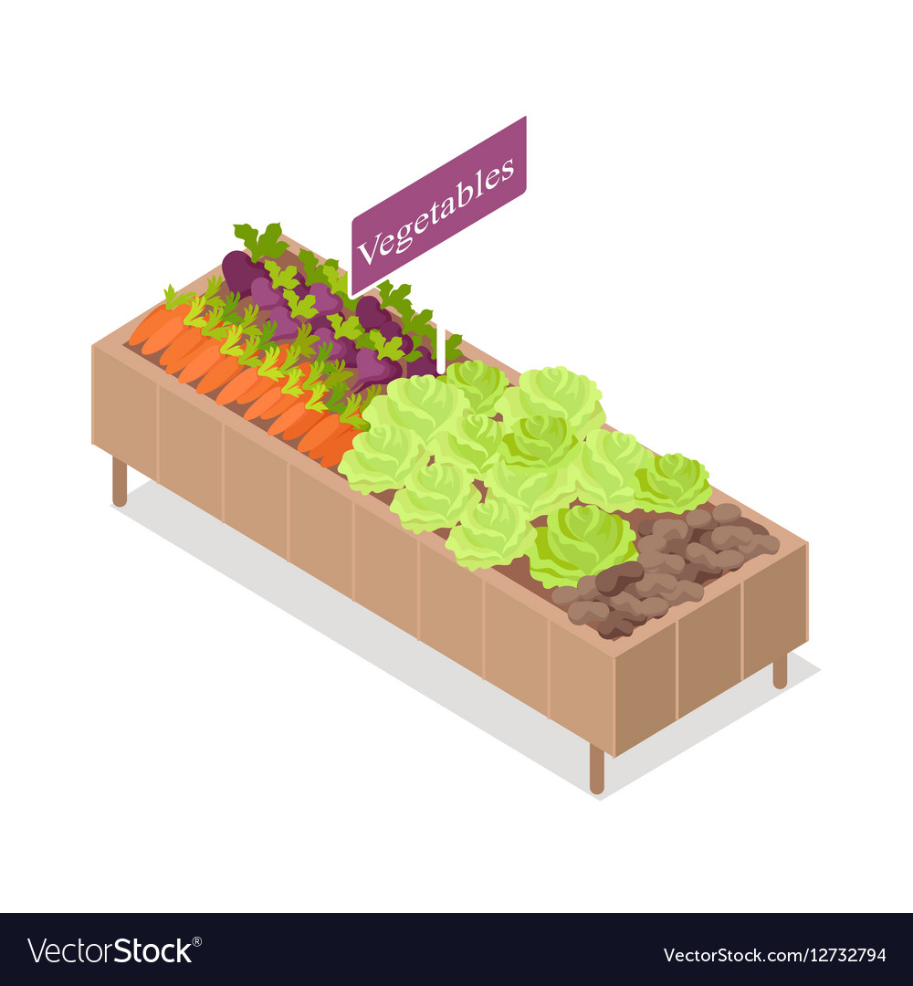 Vegetable Stand Isolated Products in Grocery Store vector image