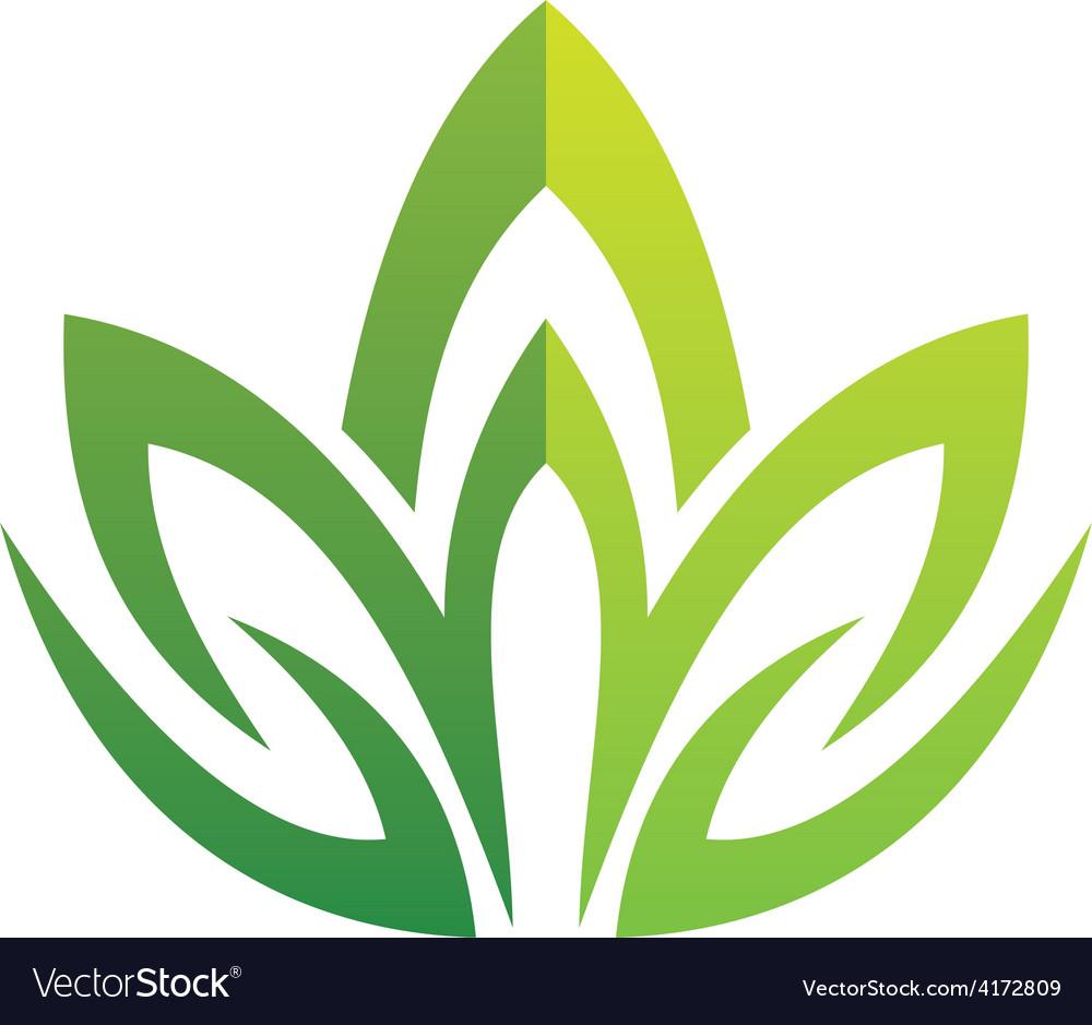 Lotus green swirl logo