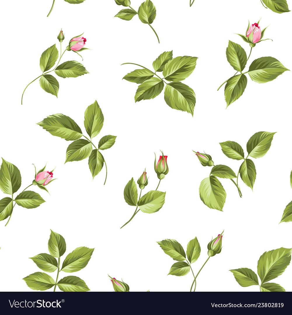 Elegant rose seamless pattern