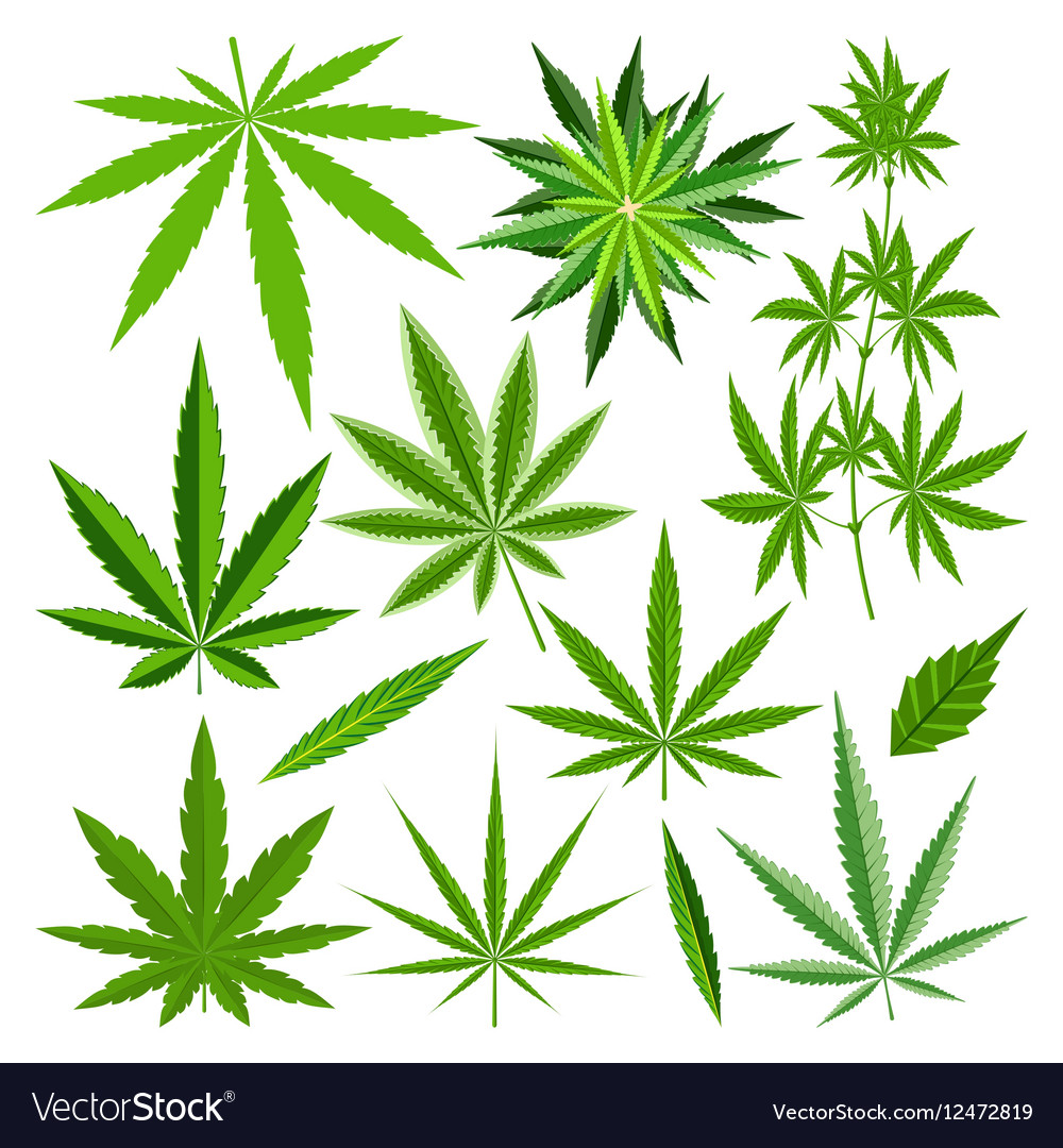 Marijuana leaf set