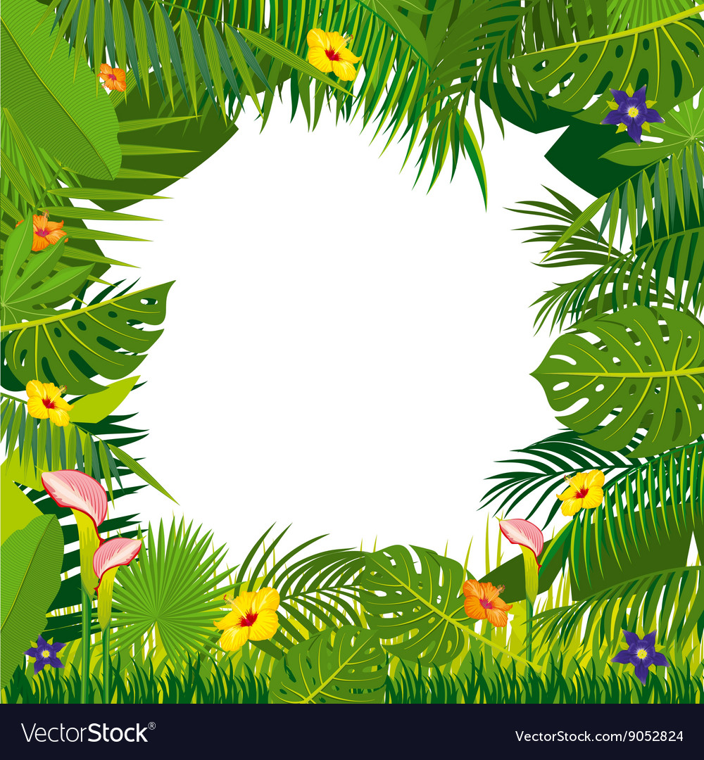 Jungle Background With Palm Tree Leaves Royalty Free Vector