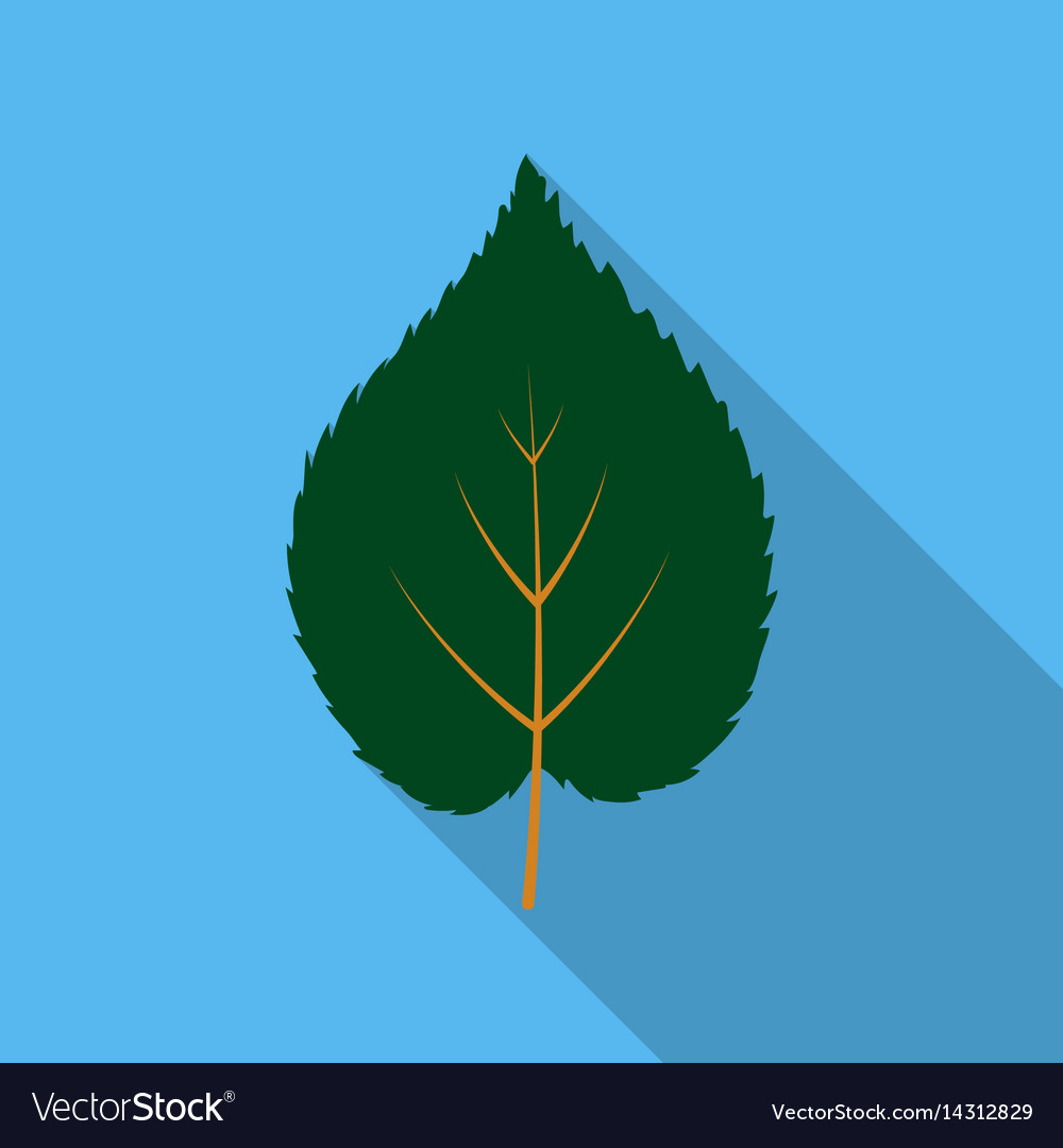 Linden leaf icon in flat style for web