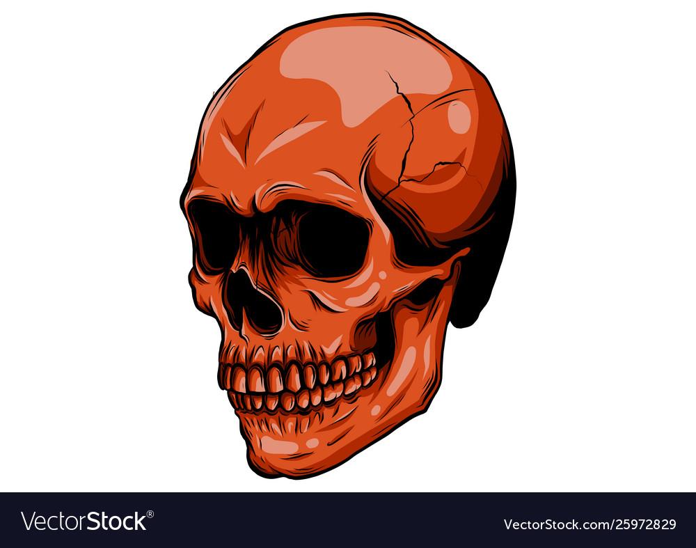 Realistic red skull for designer on