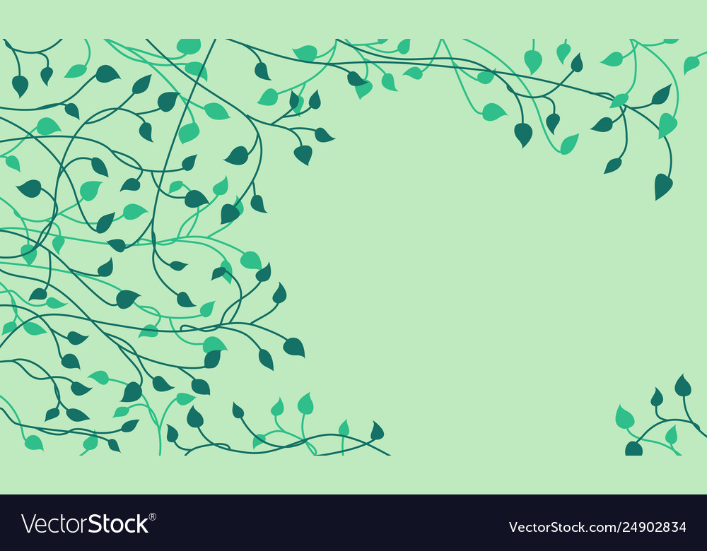 Decorative dark green ivy leaves and sprout