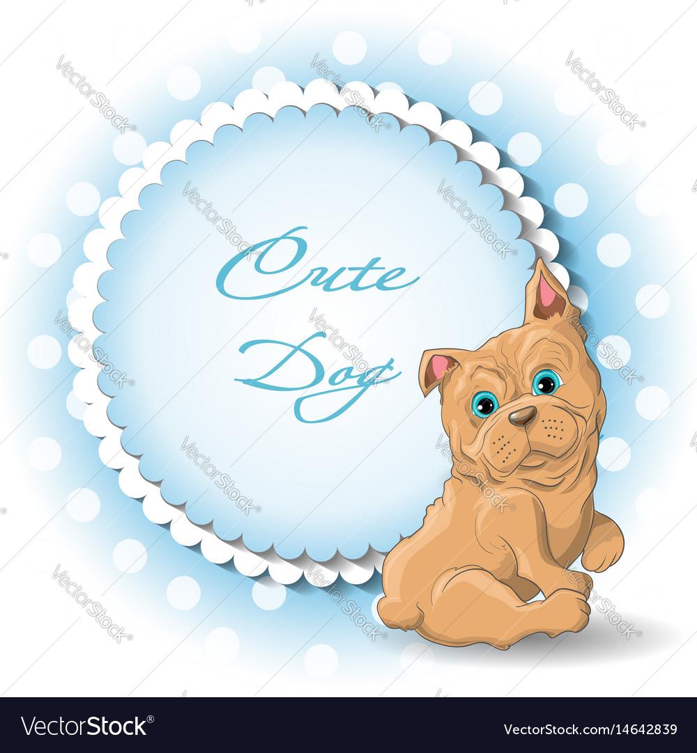 Cute dog french bulldog vector image