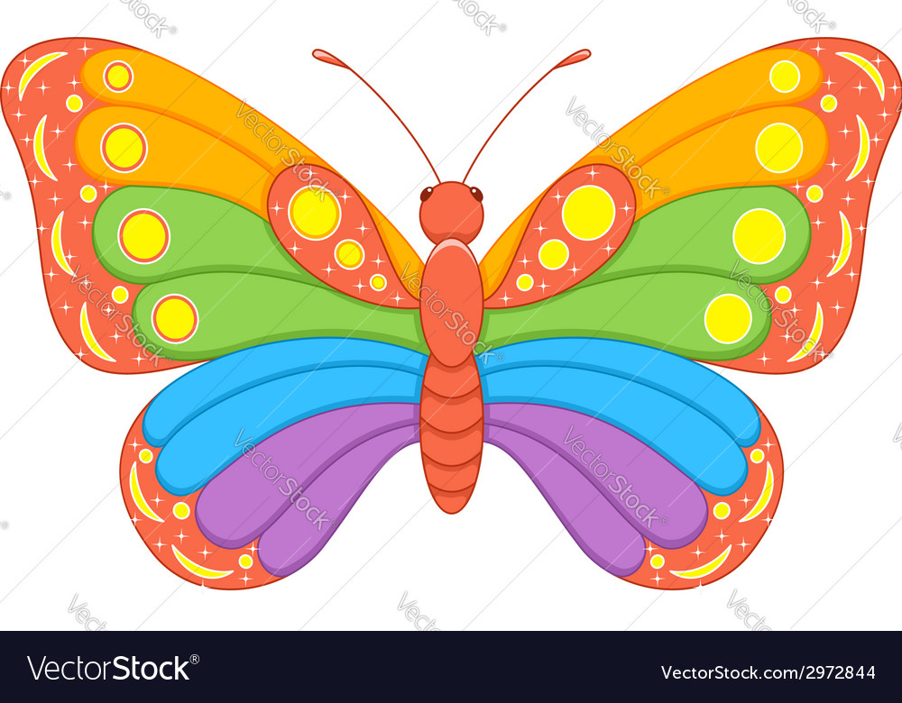 Butterfly Rainbow vector image