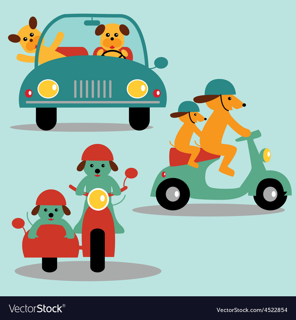 Dogs and vehicles