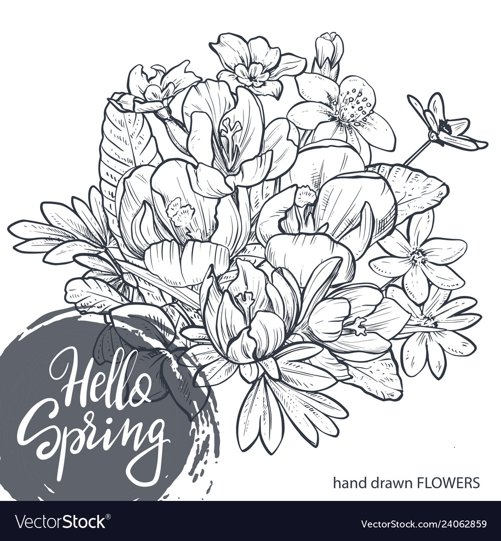 Hello spring text hand lettering with hand drawn