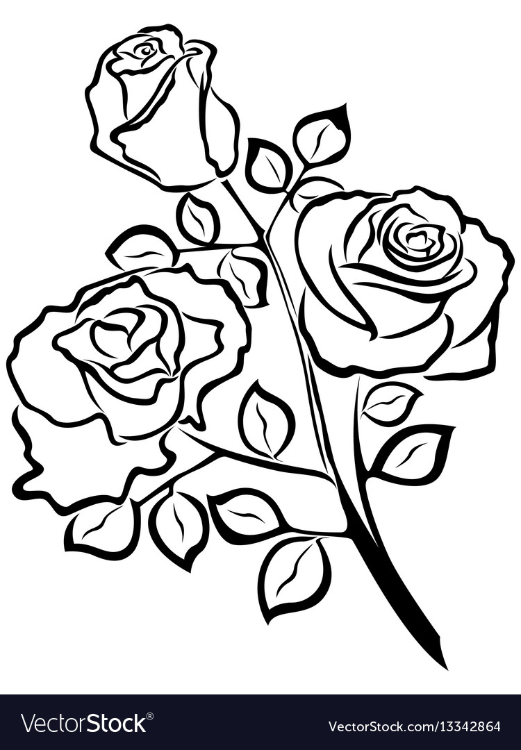Tattoo Outlines Flowers Black And White: Black Outline Of Rose Flowers Royalty Free Vector Image