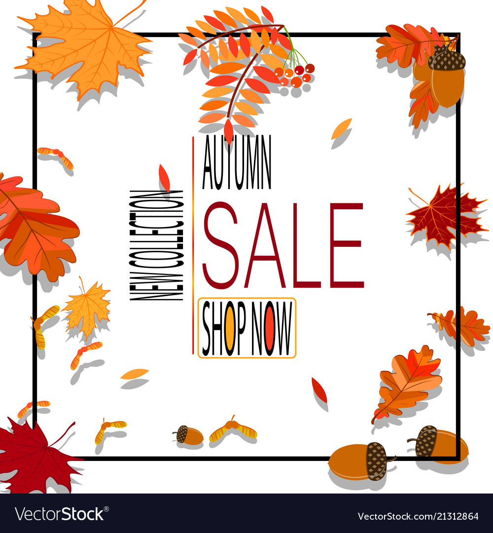 Bright banner for autumn sale with autumn leaves