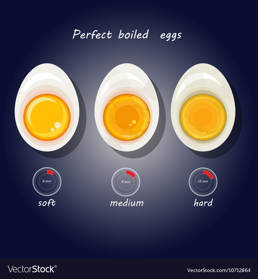 Hard-boiled eggs vector image