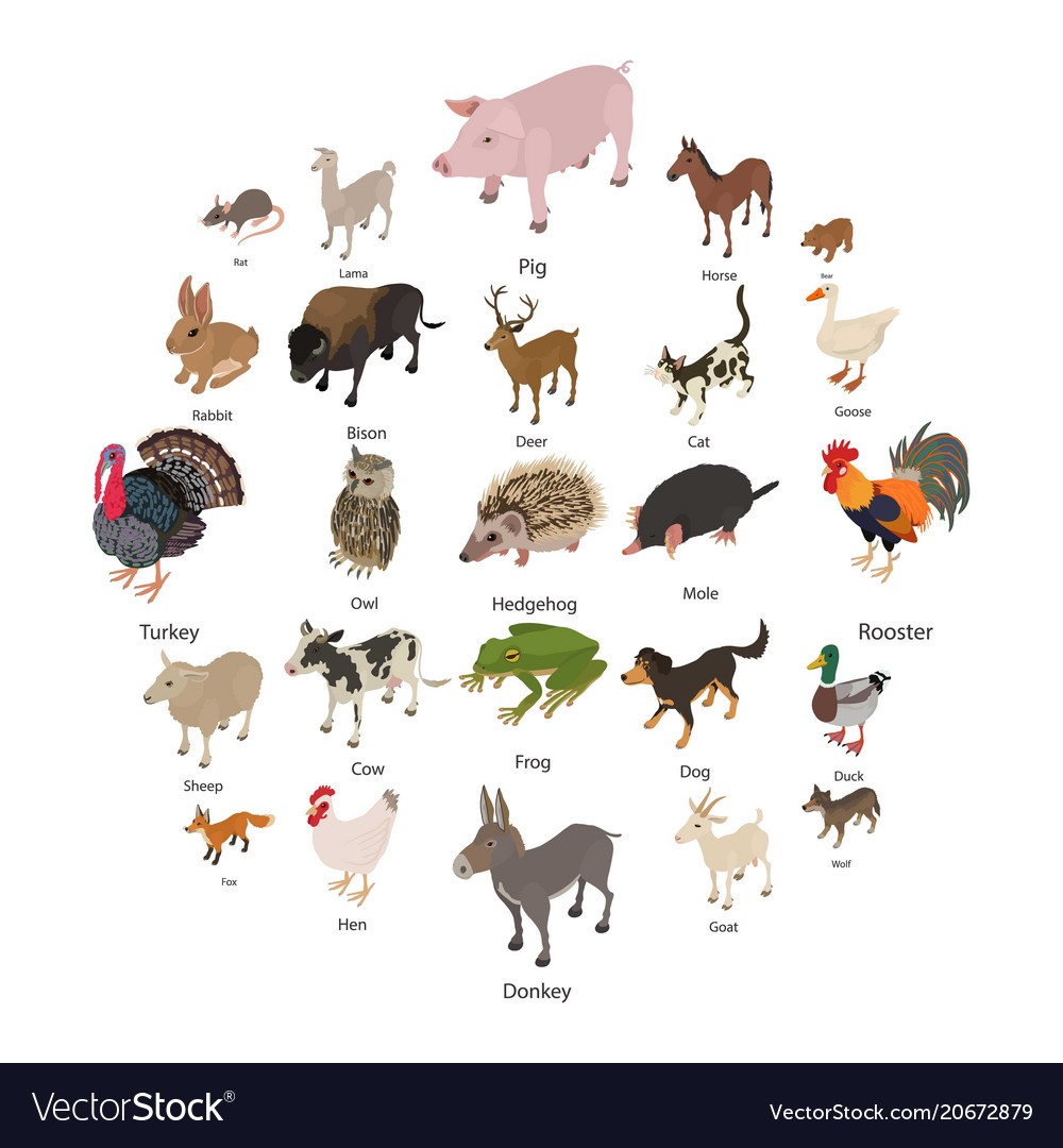 Animals collection icons set isometric style