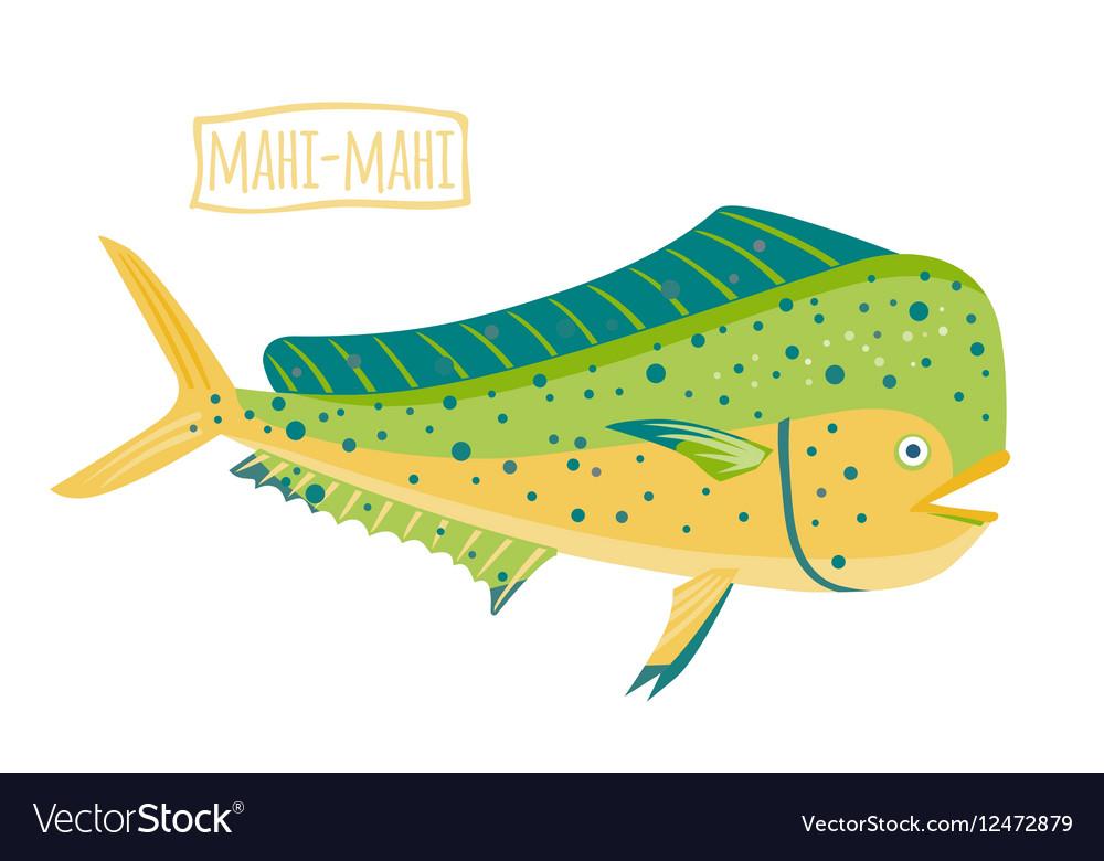 Mahi-mahi vector image