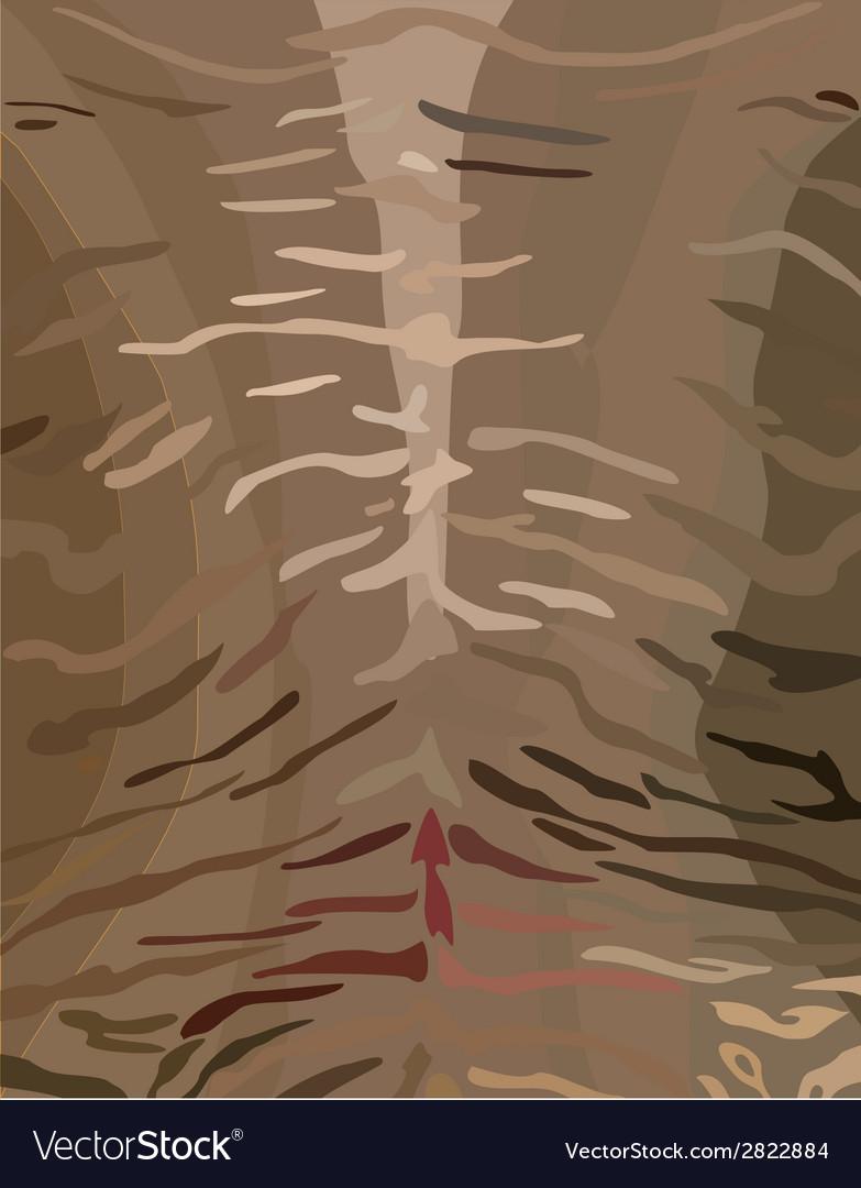 Tiger skinstripes