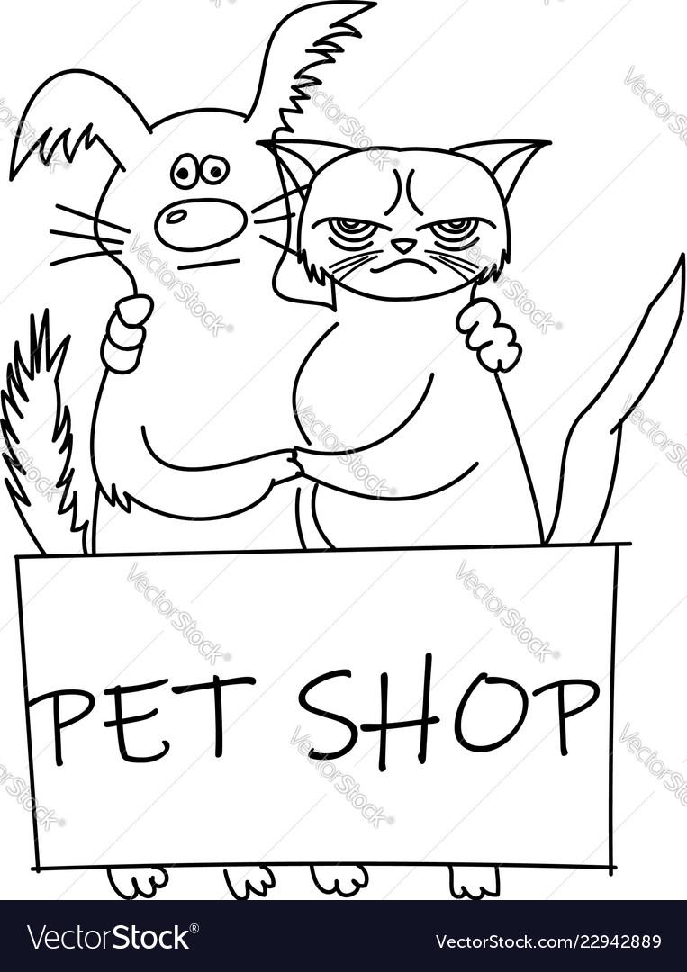Cute cat and dog best friends