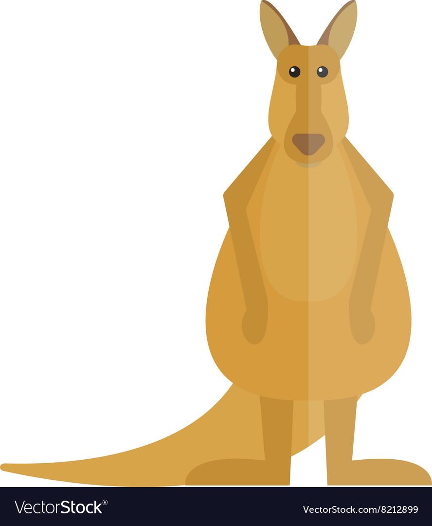 Cute kangaroo cartoon australia animal flat