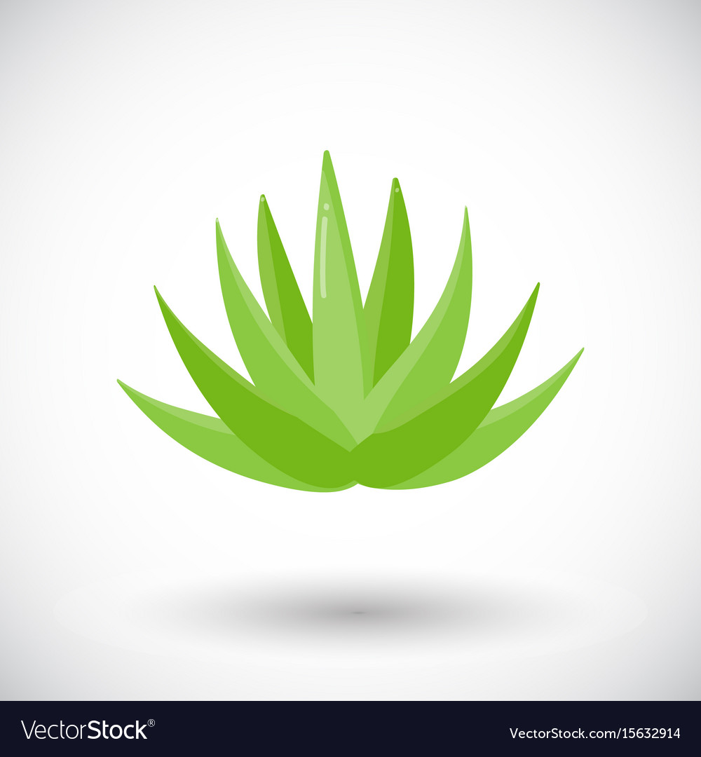 Agave plant flat icon