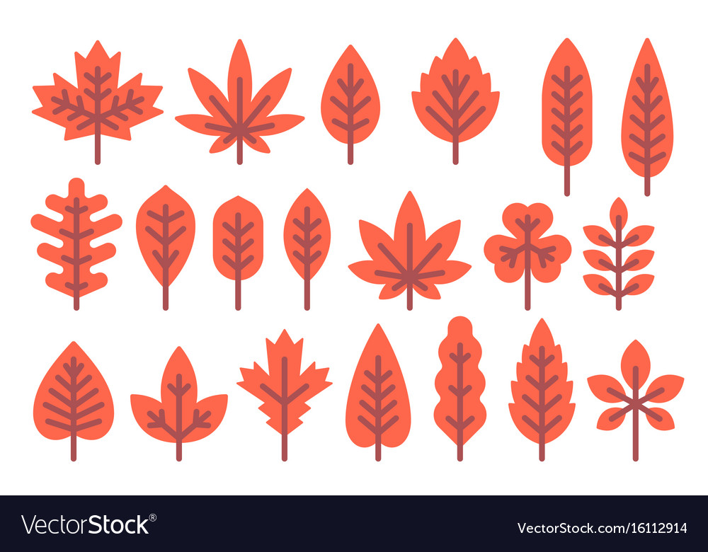 Flat Design Autumn Leaf Shapes Set Royalty Free Vector Image