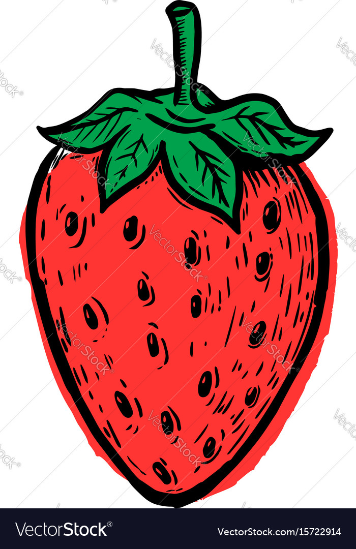 Hand drawn strawberry isolated on white