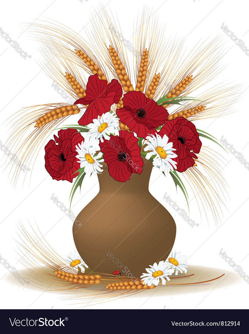 Posy of poppies daisies and ears vector image
