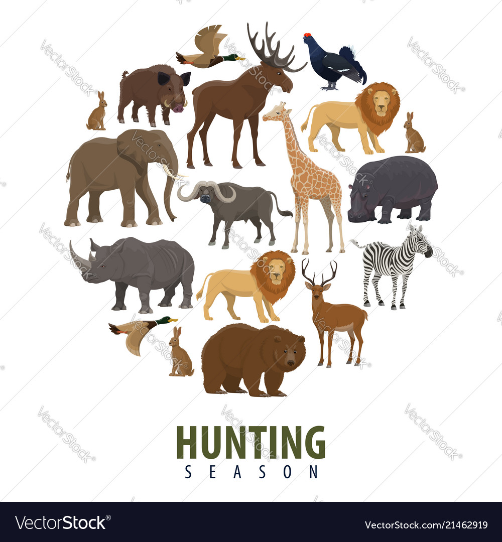 hunting season poster of wild animals royalty free vector