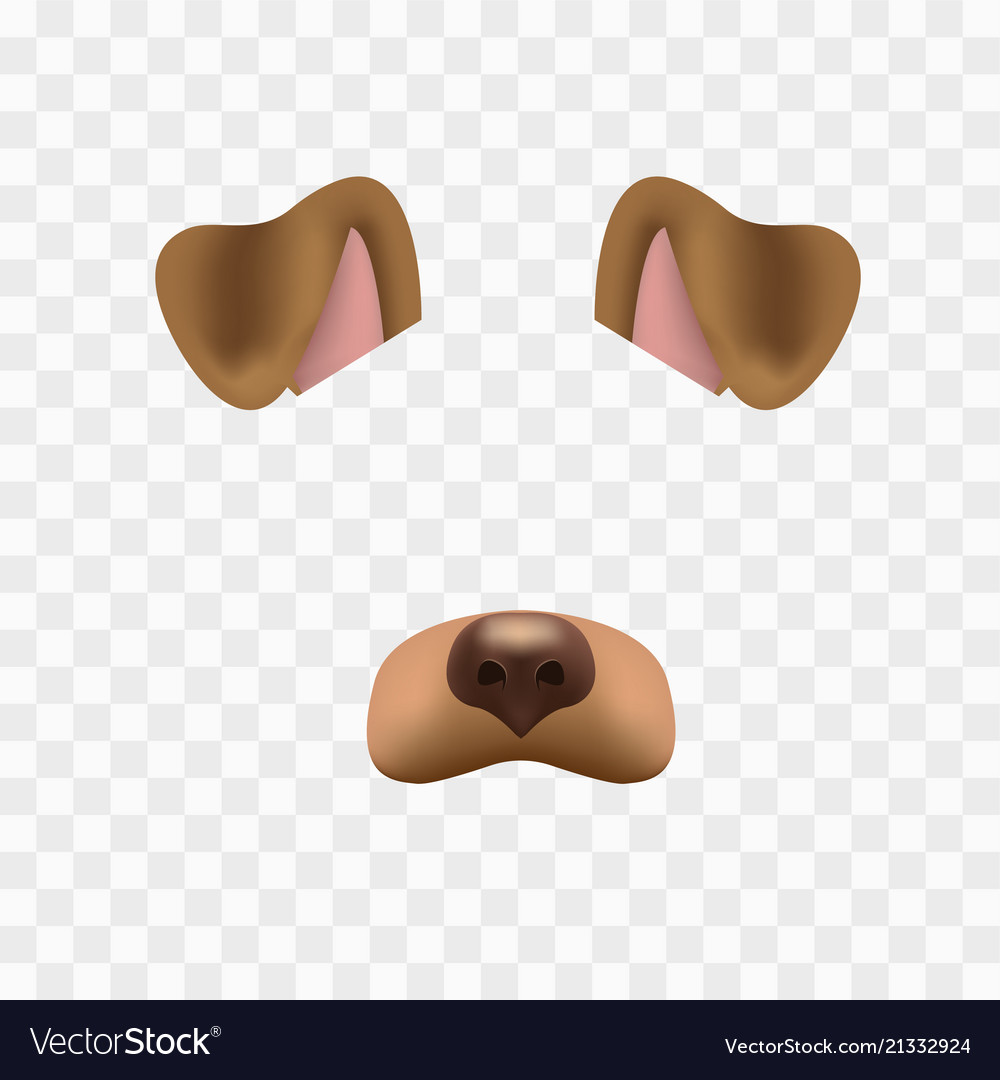 Dog face mask for video chat isolated on checkered