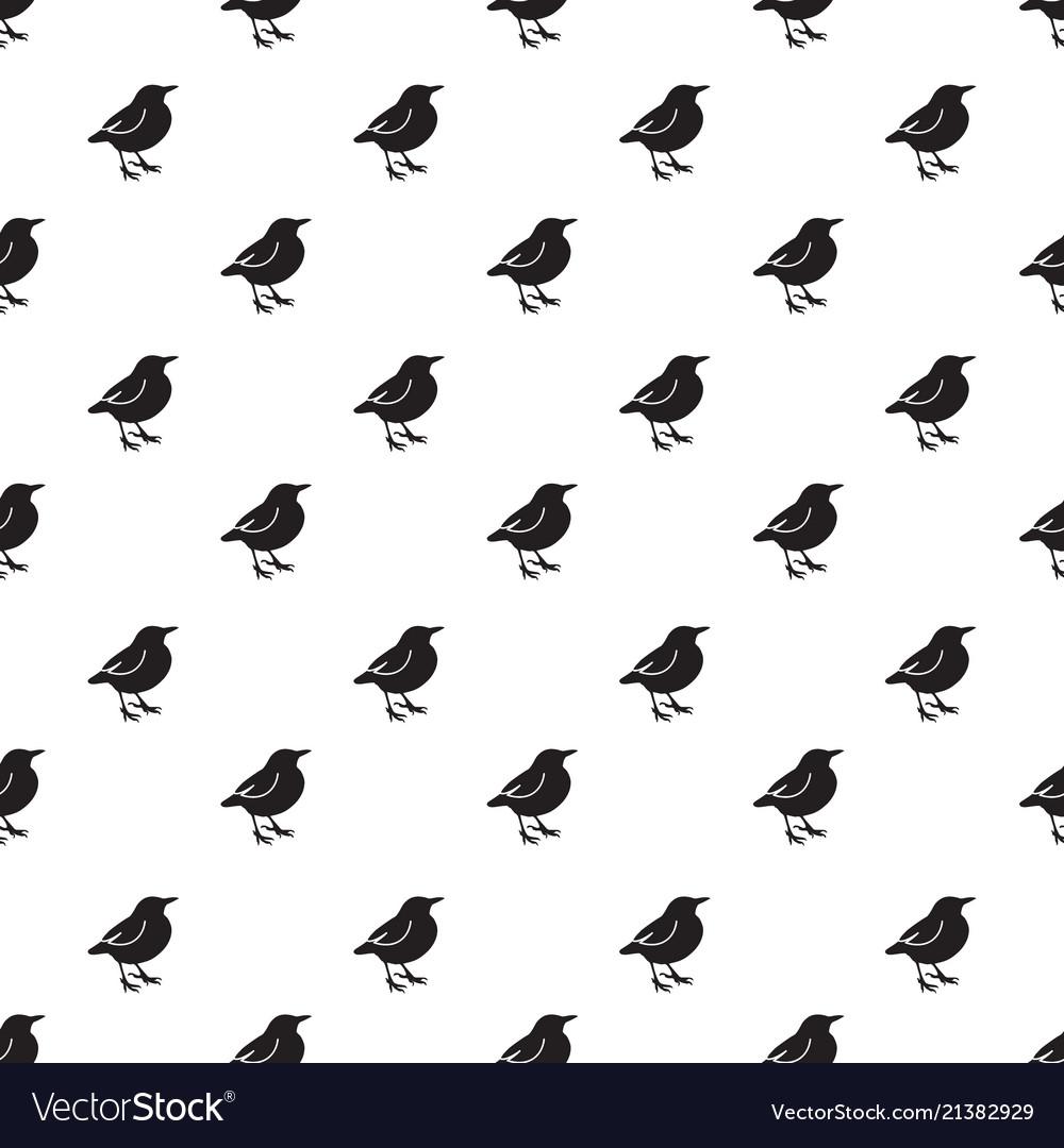 Birds background pattern
