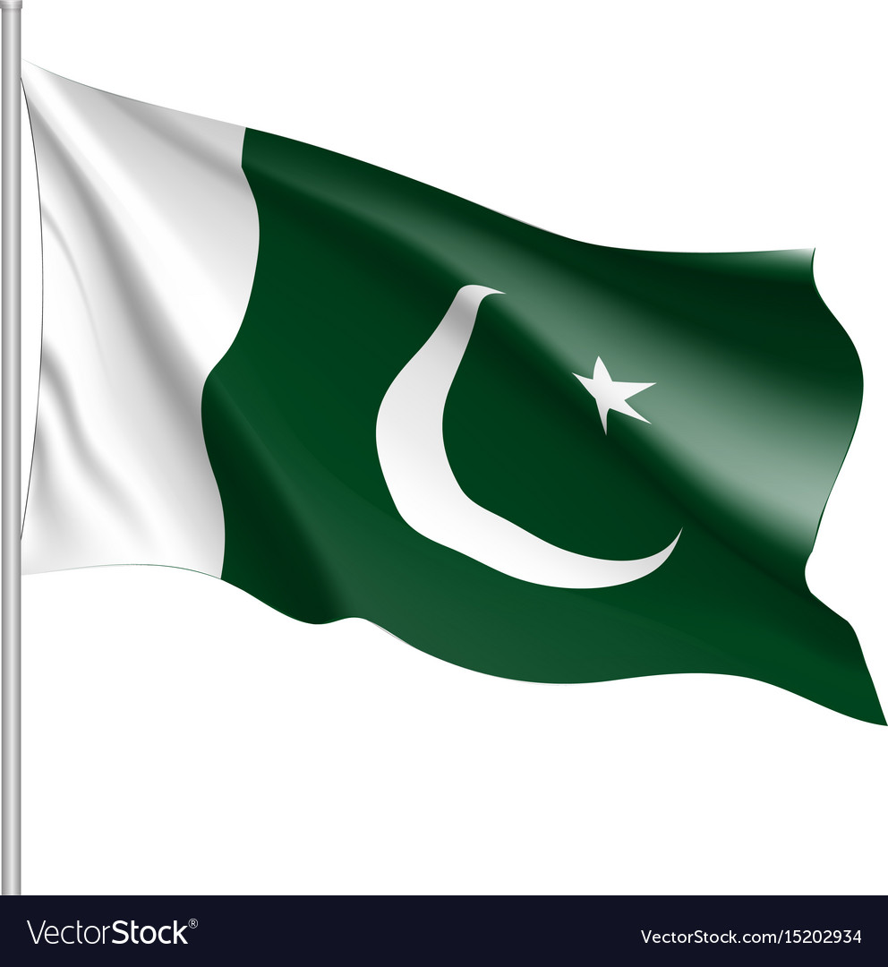 pakistan flag flat style royalty free vector image us flag clip art free downloads us flag clip art free downloads