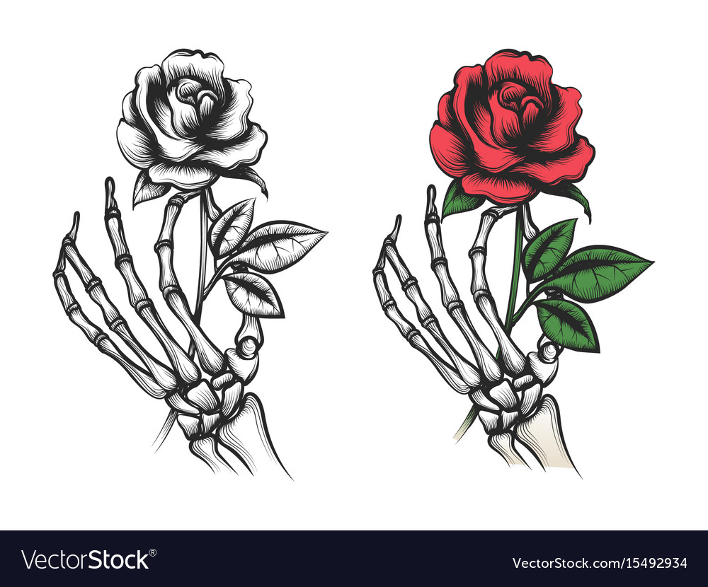 Rose flower in human skeleton hand royalty free vector image rose flower in human skeleton hand vector image ccuart Choice Image