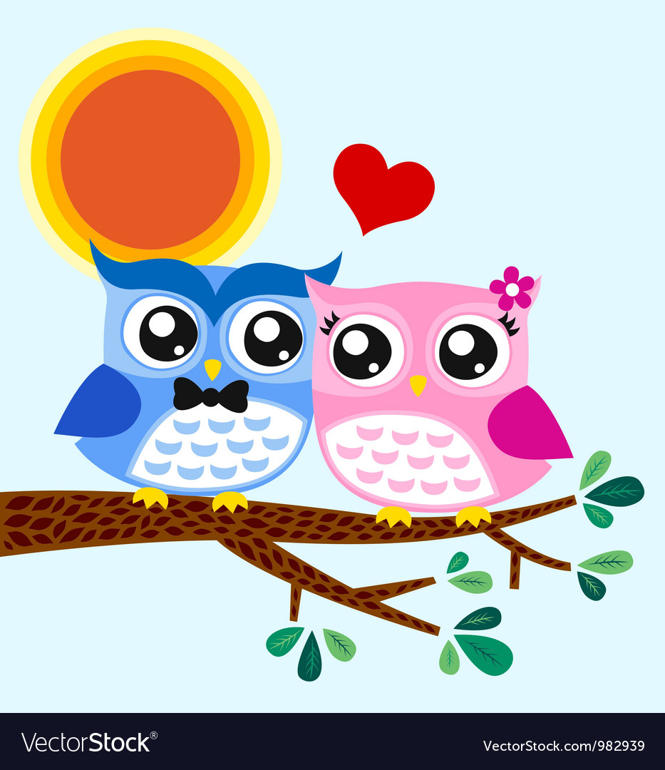 Owl couple in love
