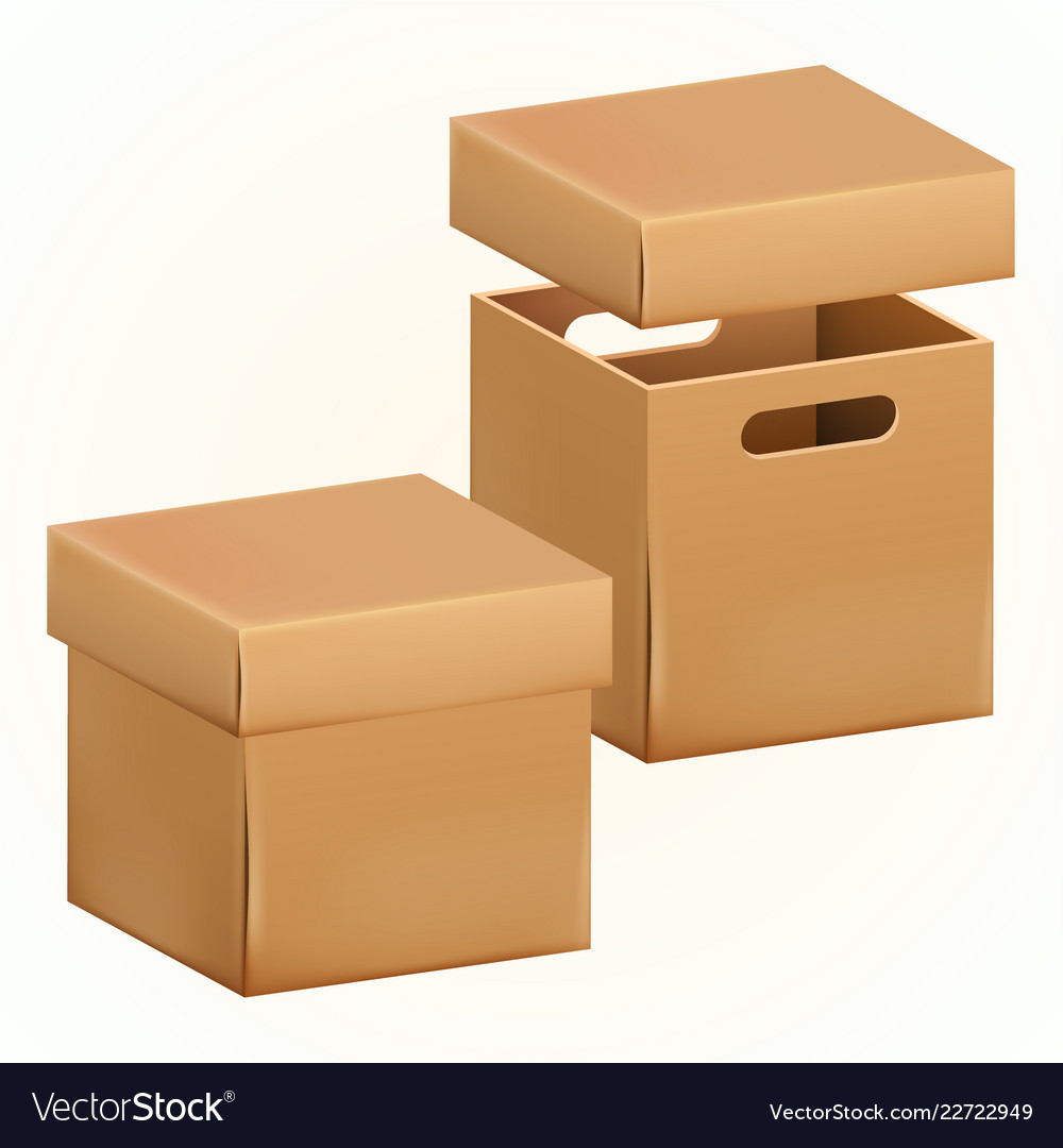 Empty cardboard box packaging container
