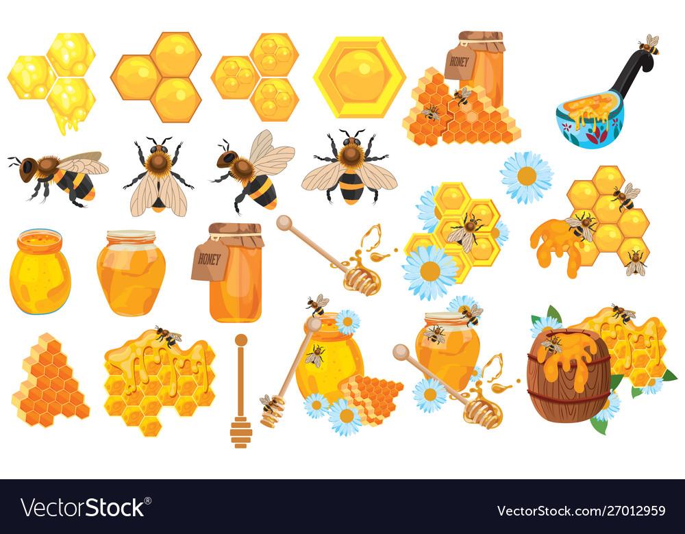Honey set collection beekeeping cartoon